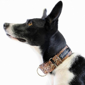 Standard Dog Martingale Collar - Leopard