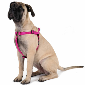 Step-in Swiftlock Dog Harness - Fuchsia