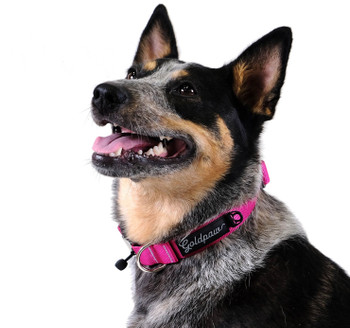 "Swiftlock Dog Side Release 1"" Collar - Fuchsia Pink"