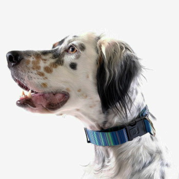 "Standard Dog Side Release 1"" Collar - Riverbed"