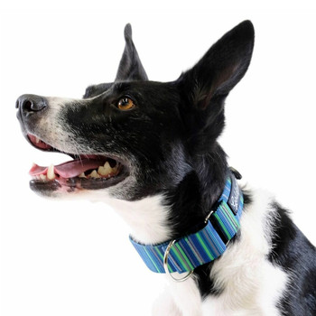 Standard Dog Martingale Collar - Riverbed