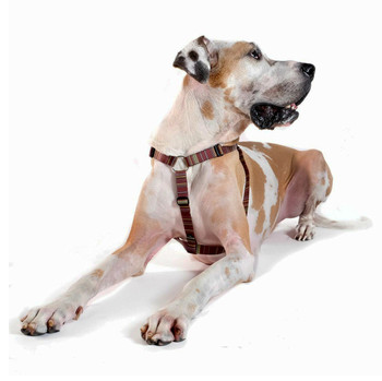 Step-in Swiftlock Dog Harness - Canyon