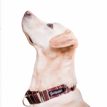 Standard Dog Martingale Collar - Canyon