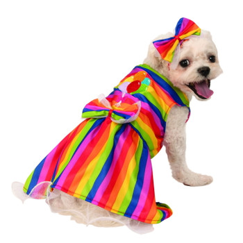 Rainbow Party Pet Costume - Small