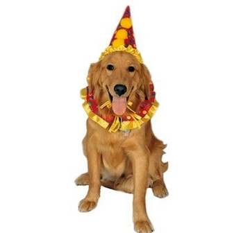 Clown Pet Costume