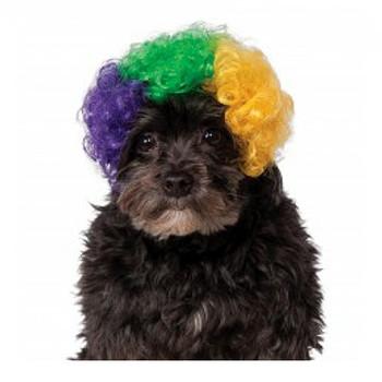 Mardi Gras Afro Pet Wig