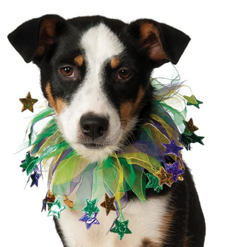 Mardi Gras Stars Fancy Collar