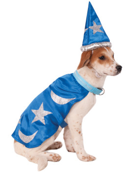 Light-Up Wizard Cape Pet Costume
