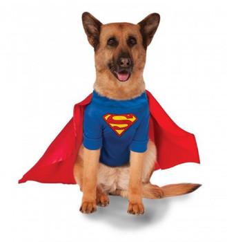 Big Dogs Superman Pet Costume