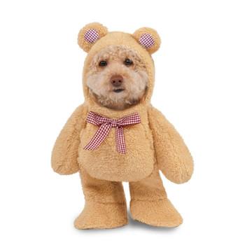 Walking Teddy Bear Pet Costume - Small