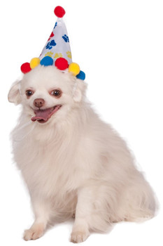 Paw Print Birthday Pet Hat