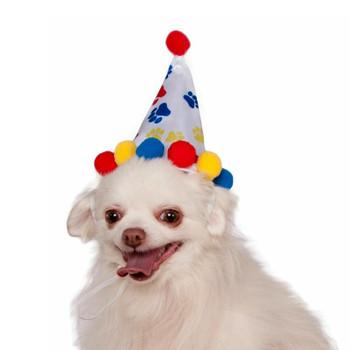 Paw Print Birthday Pet Hat