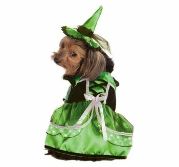 Neon LED Witch Pet Costume