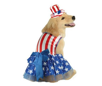 Patriotic Pooch Pet Costume