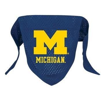 Michigan Wolverines Pet Mesh Bandana