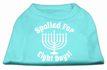 Spoiled for 8 Days Screen Print Shirt - Aqua
