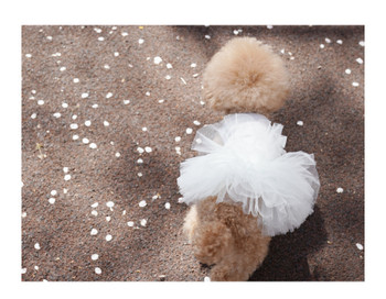 Puppy Angel Tutu Dog Dress - Ivory