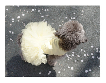 Puppy Angel Tutu Dog Dress - Yellow