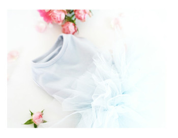 Puppy Angel Tutu Dog Dress - Blue