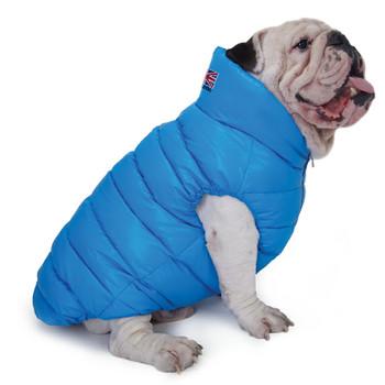Puppy Angel Love Down Vest For Bulldog - Blue