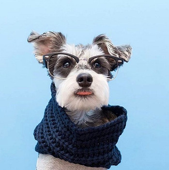 Infinity Dog Scarf - Navy Blue