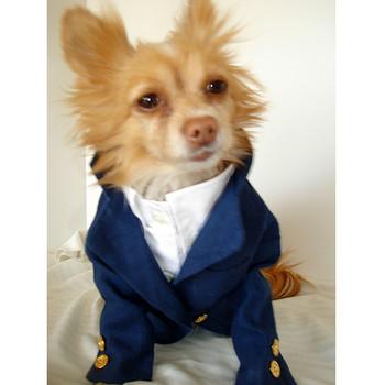 Linen Dog Blazer - Banana Yellow or Sapphire Blue