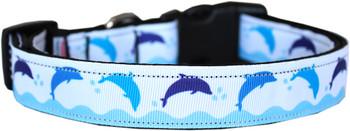 Blue Dolphins Nylon Dog & Cat Collar
