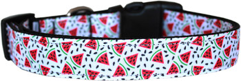 Watermelon Nylon Dog & Cat Collar