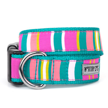 Fiesta Pet Dog Collar & Optional Lead