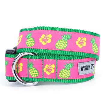 Pineapples Pet Dog Collar & Optional Lead