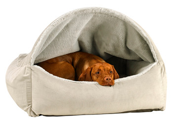 Canopy Pet Dog Bed - Cloud