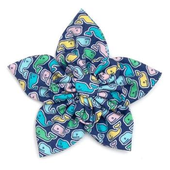 Multi Whale Pet Dog Collar Flower