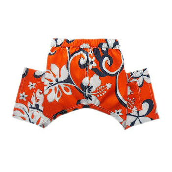 Cayman Dog Swim Trunk or Board Shorts