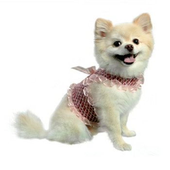 Alexa Pink Dog Harness Vest