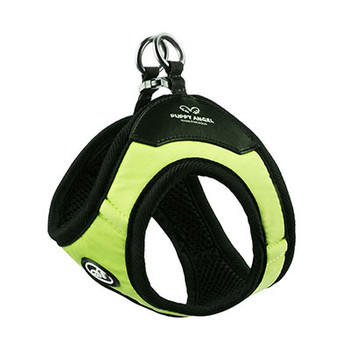 Magagio Vivid Color Dog Harness - Buckle type - Green