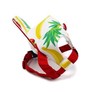 Fruitlicious Pet Dog Visor / Hat