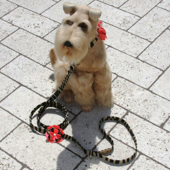 Sarah Flowers Dog Leash - Susan Lanci