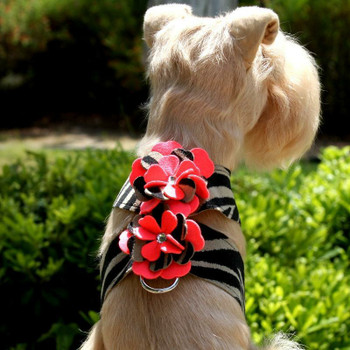 Sarah Flowers Tinkie Dog Harness