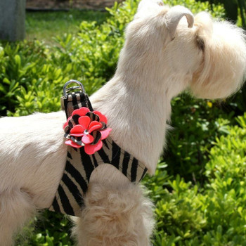 Sarah Flowers Dog Step In Harness