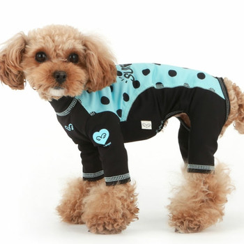 Puppy Angel Dot Rash Guard OVERALL 1 - Blue/Black