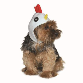 Rooster Pet Dog Hat