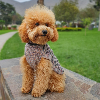 Alpaca Dog Sweater - Vertical ZigZag