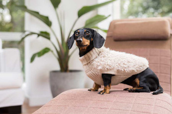 Alpaca Dog Sweater - Game of Bones Natural