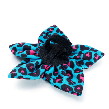 Leopard Teal Pet Dog Collar Flower