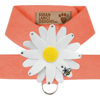 Large Daisy Peaches N Cream Tinkie Harnesses by Susan Lanci - In Stock