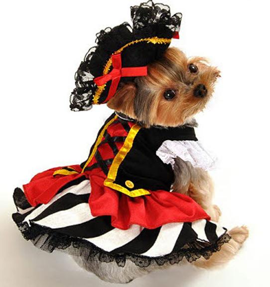 Designer Pirate Girl Dog Costume