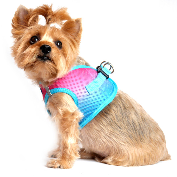 Ombre Collection American River Choke Free Dog Harness, Sugar Plum 1 - 50 lbs
