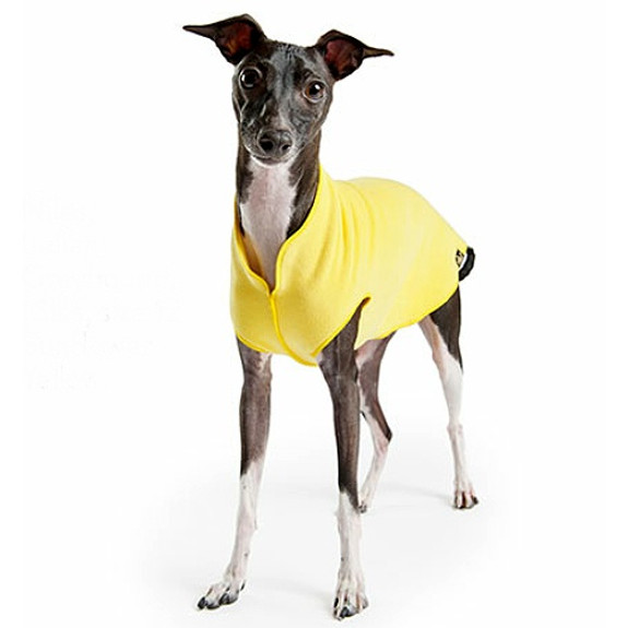 Gold Paw Stretch Fleece - Sunflower Yellow - Size 6 Only