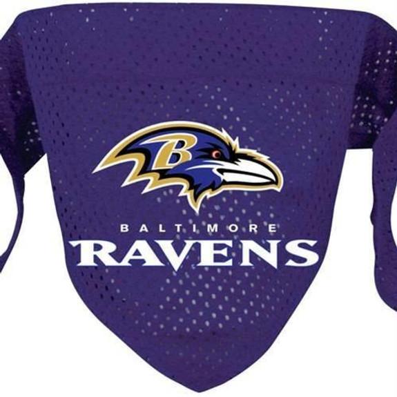 Baltimore Ravens Pet Mesh Bandana