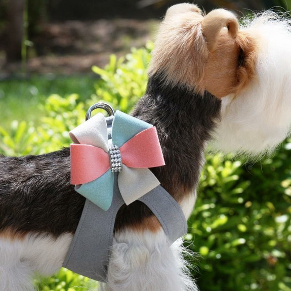Julia Bow Dog Step In Harness